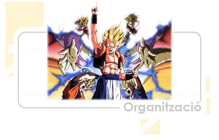 Organitzacio